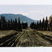 """Staffan Schönberg """"Western Lands"""""""